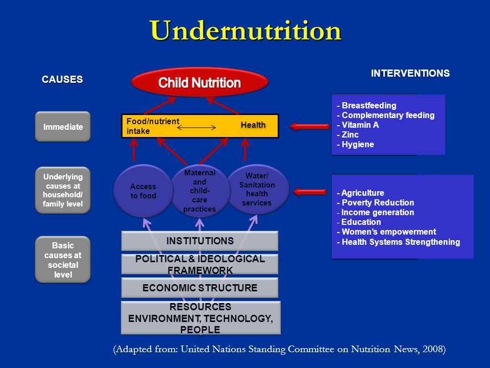 INTERVENTIONS - Breastfeeding - Complementary feeding - Vitamin A - Zinc - Hygiene INSTITUTIONS POLITICAL & IDEOLOGICAL FRAMEWORK ECONOMIC STRUCTURE F