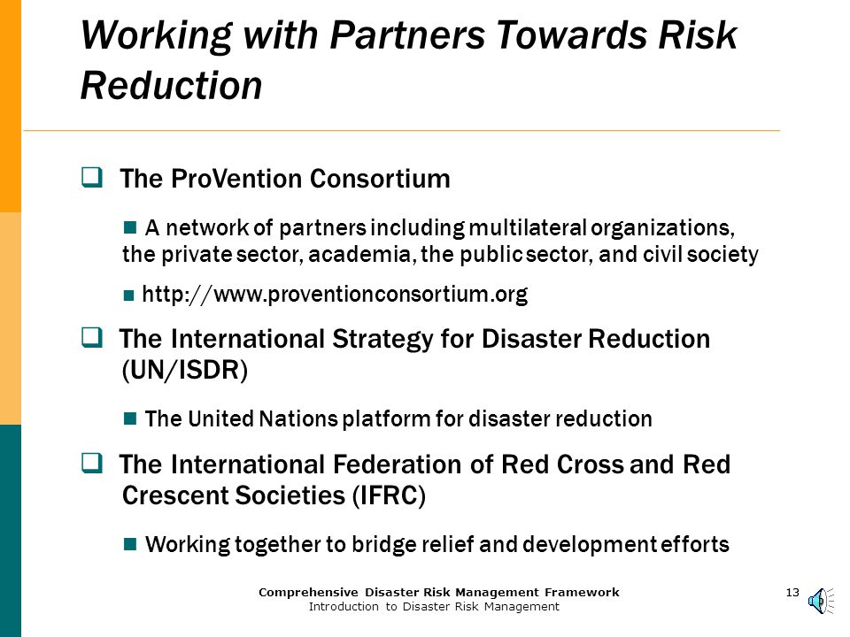 12Comprehensive Disaster Risk Management Framework Introduction to Disaster Risk Management 12 Working with Partners to Support the Millennium Development Goals through HRM  Goal 1 - Eradicate extreme poverty and hunger  Goal 7 - Ensure environmental sustainability  Goal 8 - Develop a global partnership for development