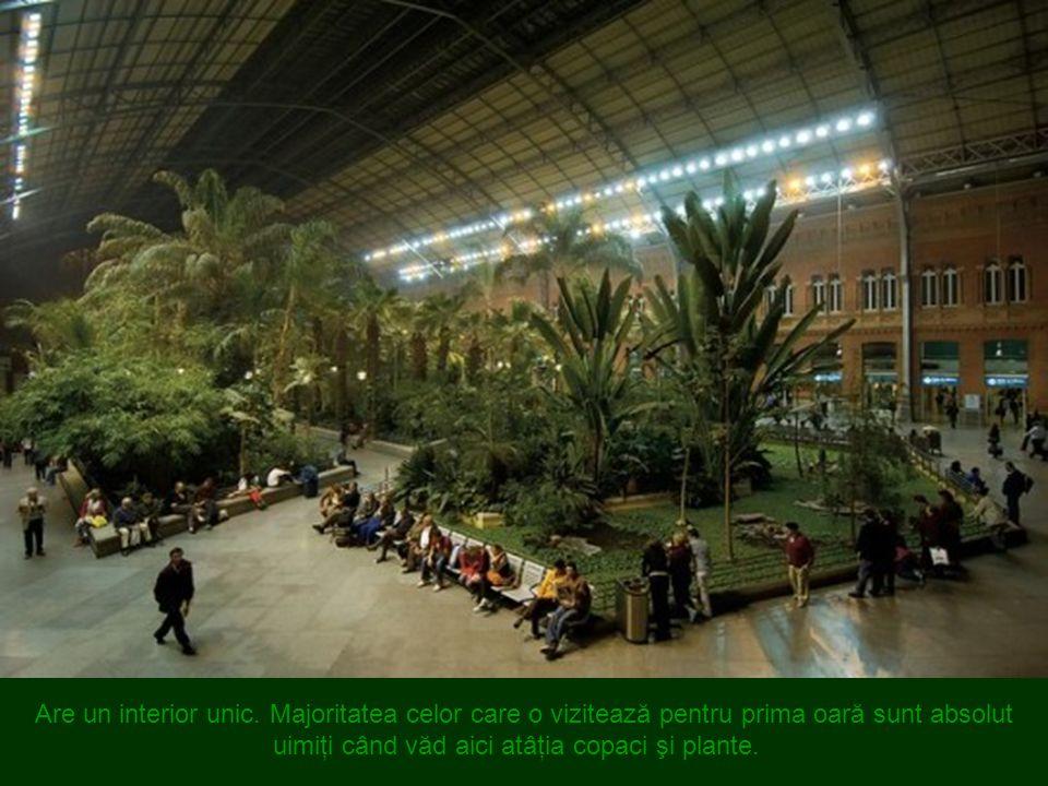 Atocha Train Station, Madrid, Spain