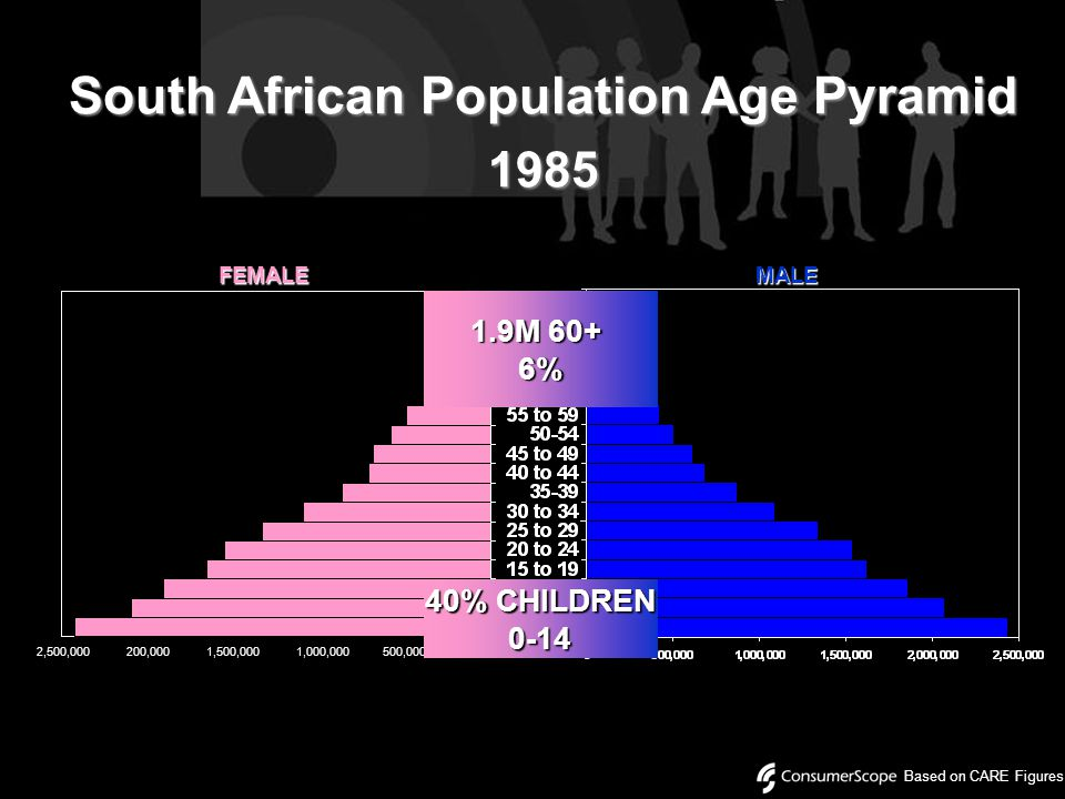 South African Population Age Pyramid 1985 Based on CARE Figures 2,500,000 200,000 1,500,000 1,000,000 500,000 FEMALEMALE 40% CHILDREN 0-14 1.9M 60+ 6%