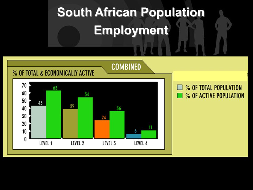 South African Population Employment