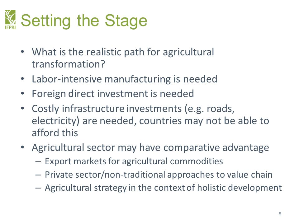 Setting the Stage What is the realistic path for agricultural transformation? Labor-intensive manufacturing is needed Foreign direct investment is nee