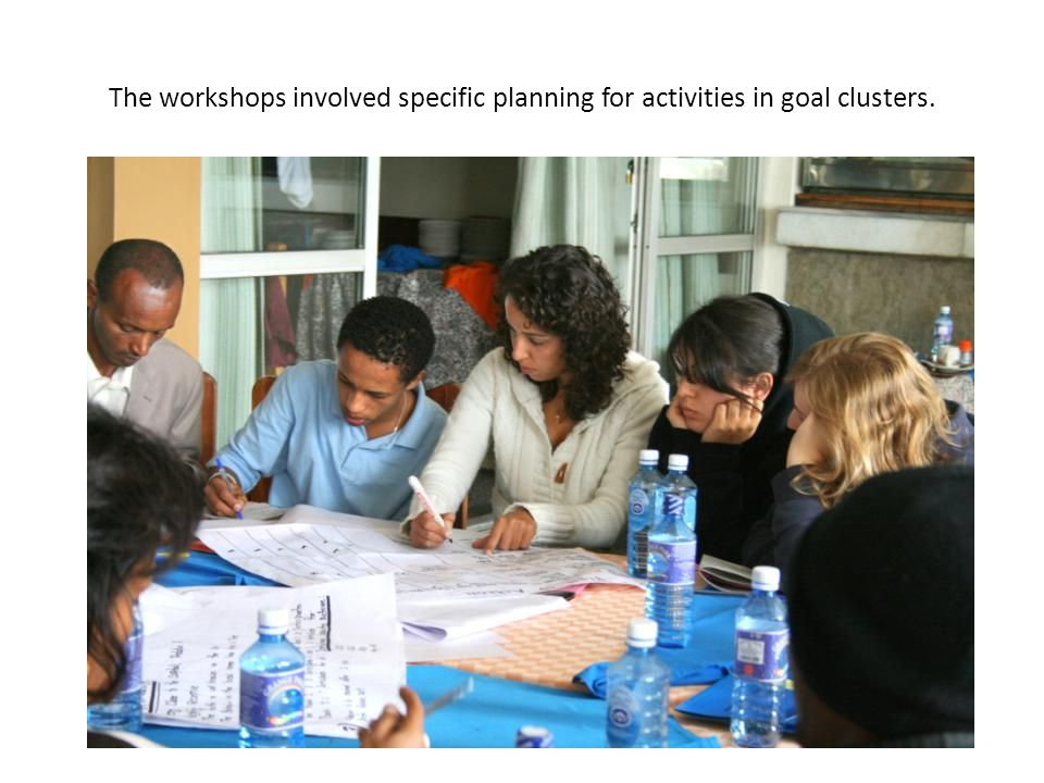 The workshops involved specific planning for activities in goal clusters.