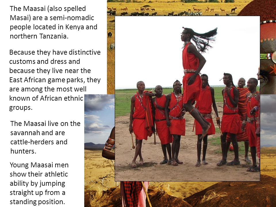 The Maasai (also spelled Masai) are a semi-nomadic people located in Kenya and northern Tanzania. The Maasai live on the savannah and are cattle-herde