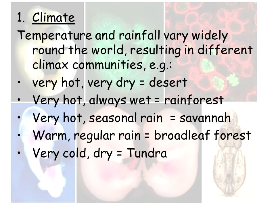 1.Climate Temperature and rainfall vary widely round the world, resulting in different climax communities, e.g.: very hot, very dry = desert Very hot,