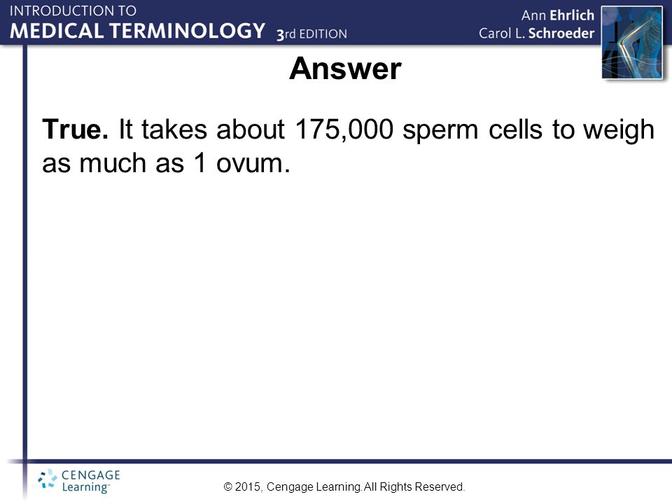 © 2015, Cengage Learning. All Rights Reserved. Answer True. It takes about 175,000 sperm cells to weigh as much as 1 ovum.