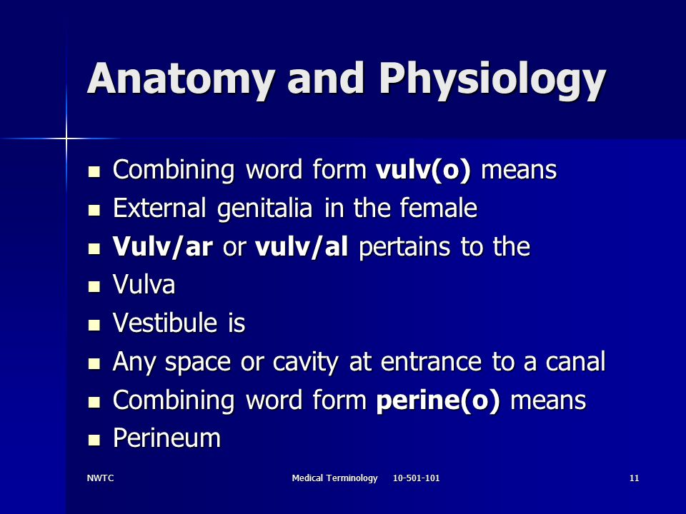 NWTCMedical Terminology 10-501-10111 Anatomy and Physiology Combining word form vulv(o) means Combining word form vulv(o) means External genitalia in