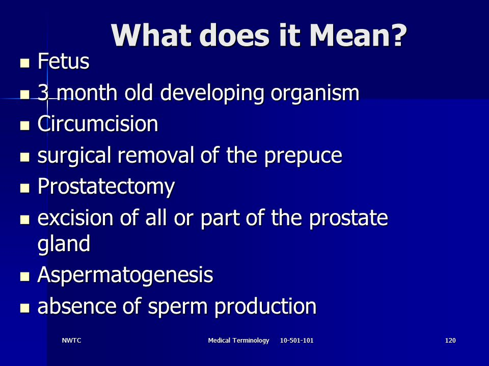 NWTCMedical Terminology 10-501-101120 What does it Mean? Fetus Fetus 3 month old developing organism 3 month old developing organism Circumcision Circ