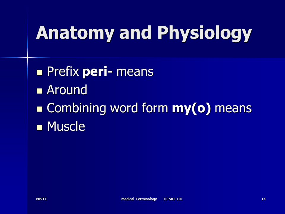 NWTCMedical Terminology 10-501-10114 Anatomy and Physiology Prefix peri- means Prefix peri- means Around Around Combining word form my(o) means Combin