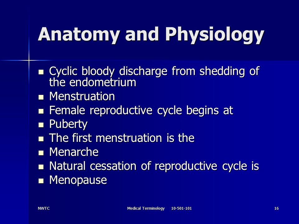 NWTCMedical Terminology 10-501-10116 Anatomy and Physiology Cyclic bloody discharge from shedding of the endometrium Cyclic bloody discharge from shed