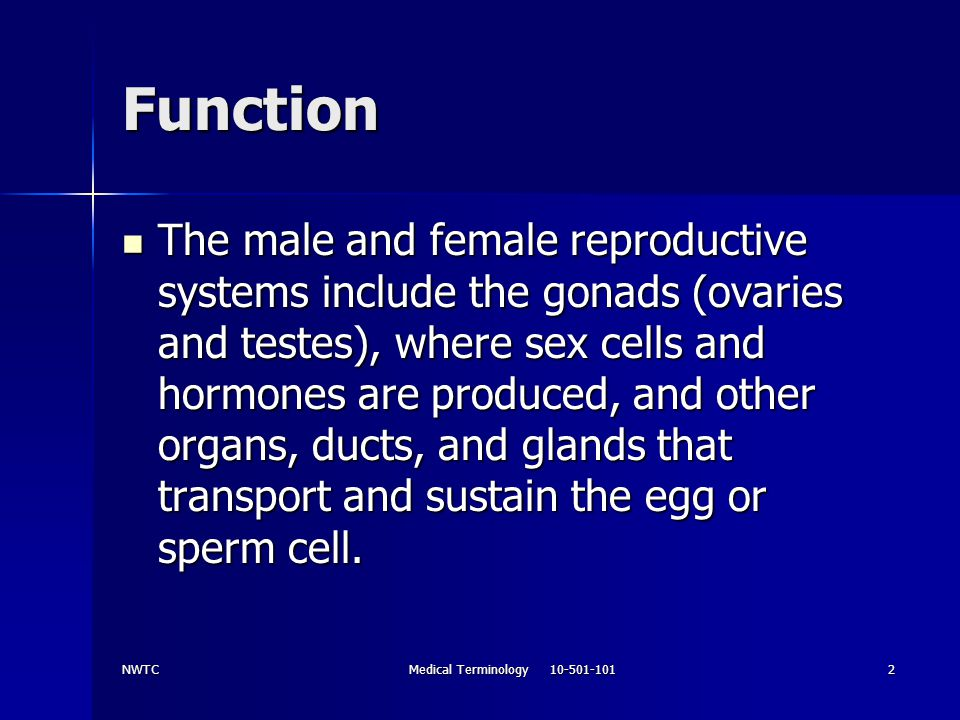 NWTCMedical Terminology 10-501-1013 Anatomy and Physiology Female reproductive system includes: Female reproductive system includes: –Ovaries produce Sex cells Sex cells Hormones Hormones –Uterine tubes –Uterus –Vagina –Accessory glands –External genital structure