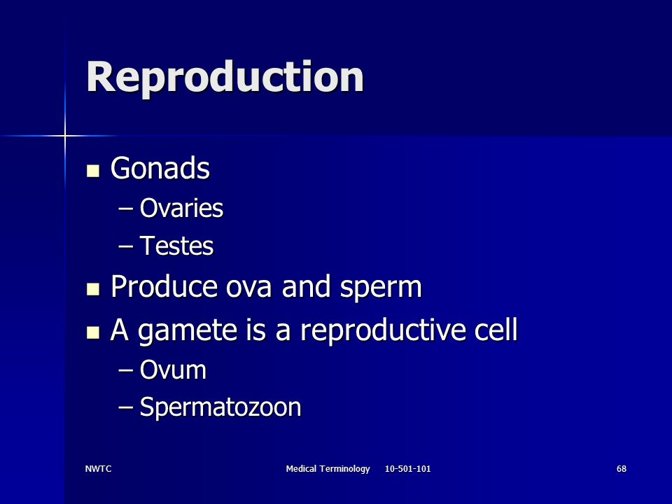 NWTCMedical Terminology 10-501-10168 Reproduction Gonads Gonads –Ovaries –Testes Produce ova and sperm Produce ova and sperm A gamete is a reproductiv
