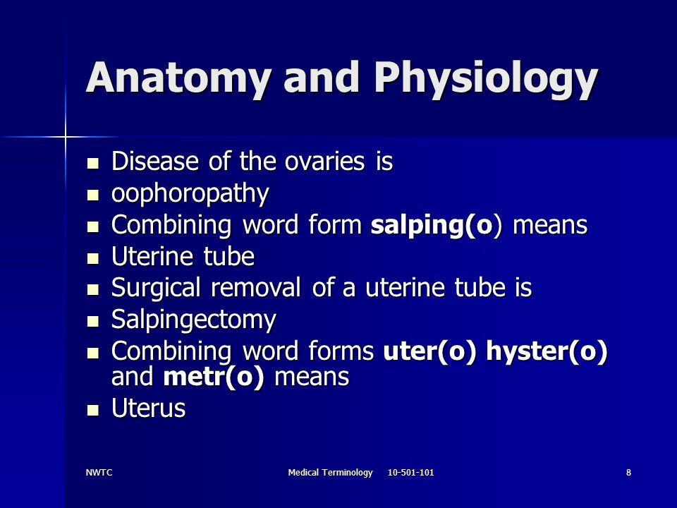 NWTCMedical Terminology 10-501-10119 Anatomy and Physiology Uterine (menstrual) phase Uterine (menstrual) phase Menses days 1-5 Menses days 1-5 Blood is shed form the vagina Blood is shed form the vagina Proliferative phase days 6-12/13-14 Proliferative phase days 6-12/13-14 Growth of the endometruim Growth of the endometruim Proliferative phase continues Proliferative phase continues Secretory phase days 15-28 Secretory phase days 15-28 Continued growth of endometruim Continued growth of endometruim Secretion of glycogen Secretion of glycogen