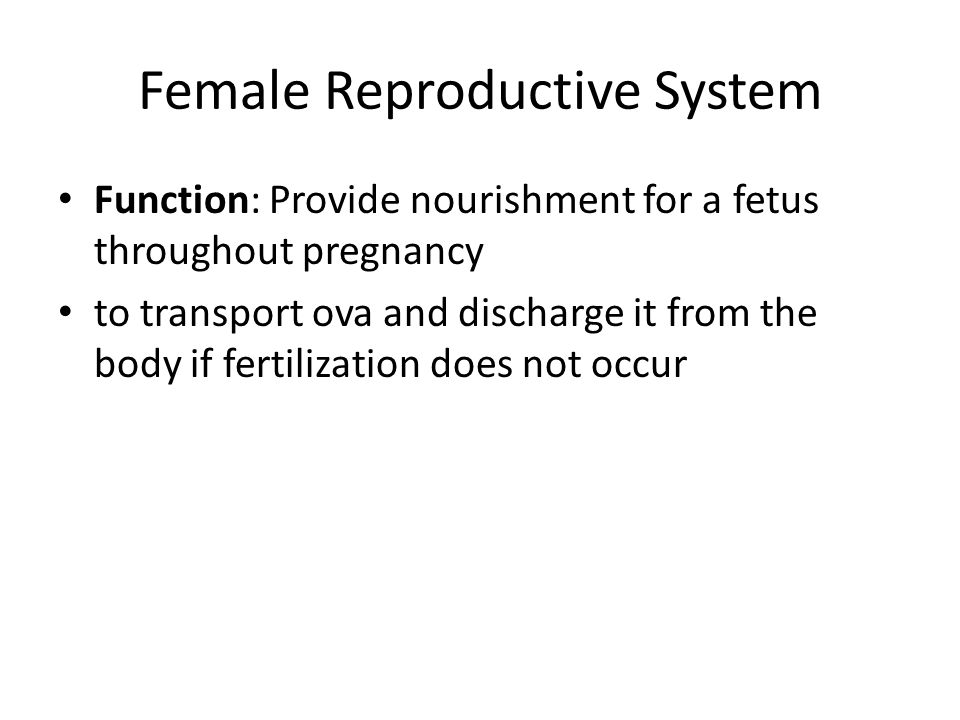 Female Reproductive System Function: Provide nourishment for a fetus throughout pregnancy to transport ova and discharge it from the body if fertilization does not occur