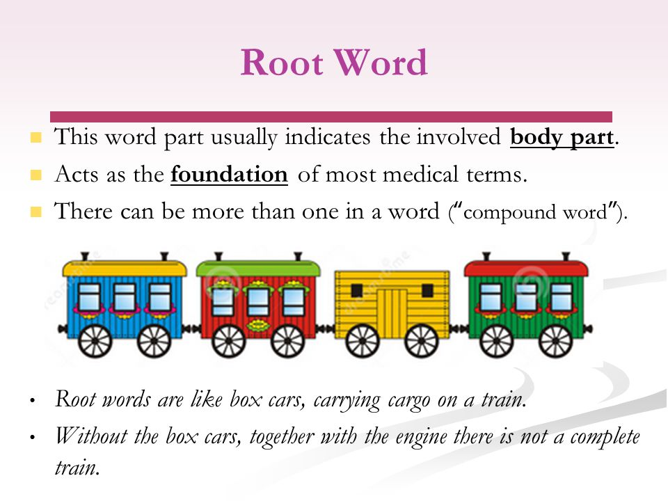 Root Word This word part usually indicates the involved body part.