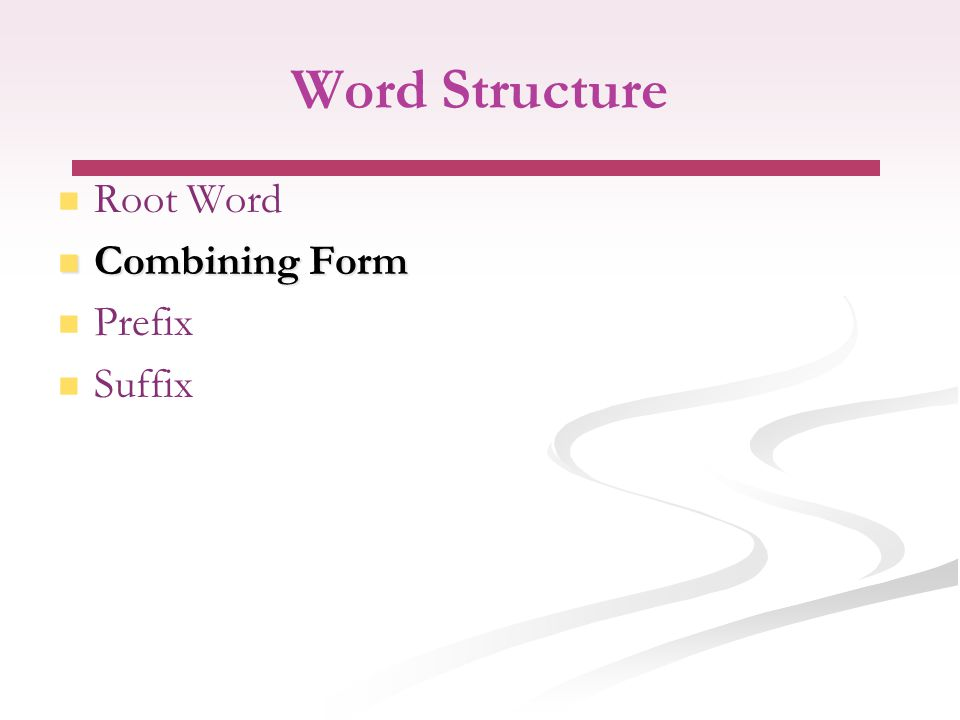 Word Structure Root Word Combining Form Combining Form Prefix Suffix