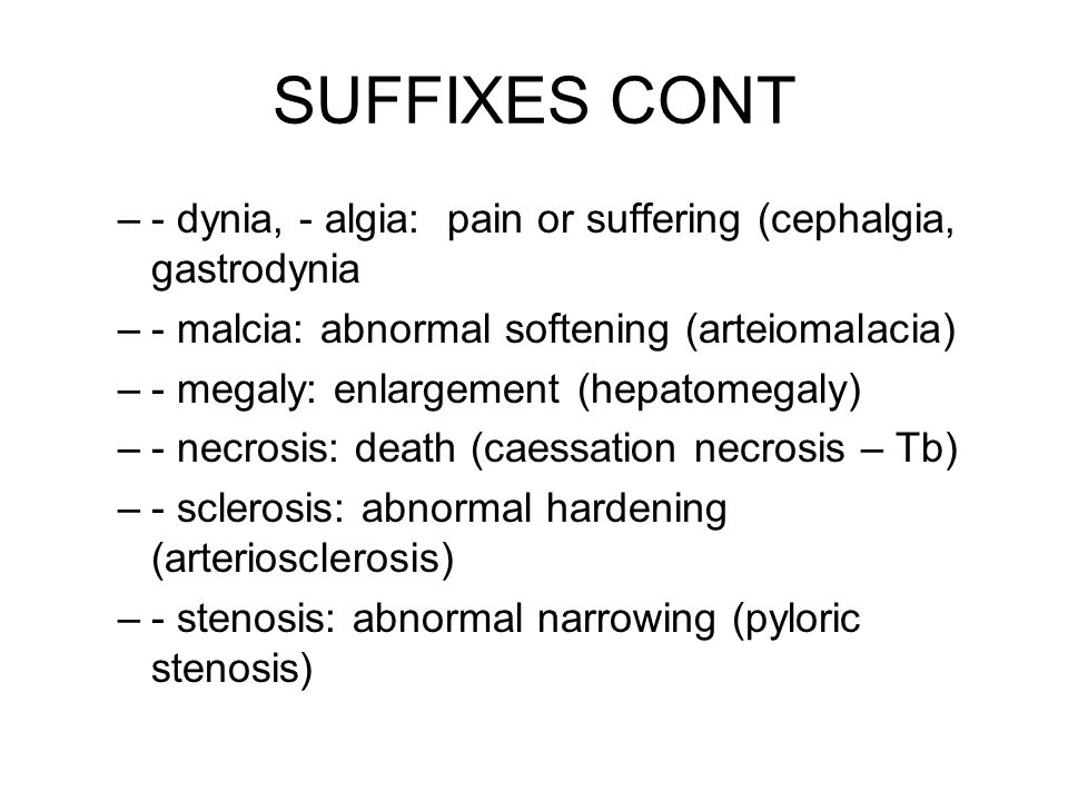 SUFFIXES CONT PROCEDURES –- centesis: fluid removal (amniocentesis) –- ectomy: removal –- graphy, - gram: picture (arteriography, pyelogram) –- plasty: to repair (rhinoplasty) –- scopy: visual exam (colonoscopy, endoscopy)