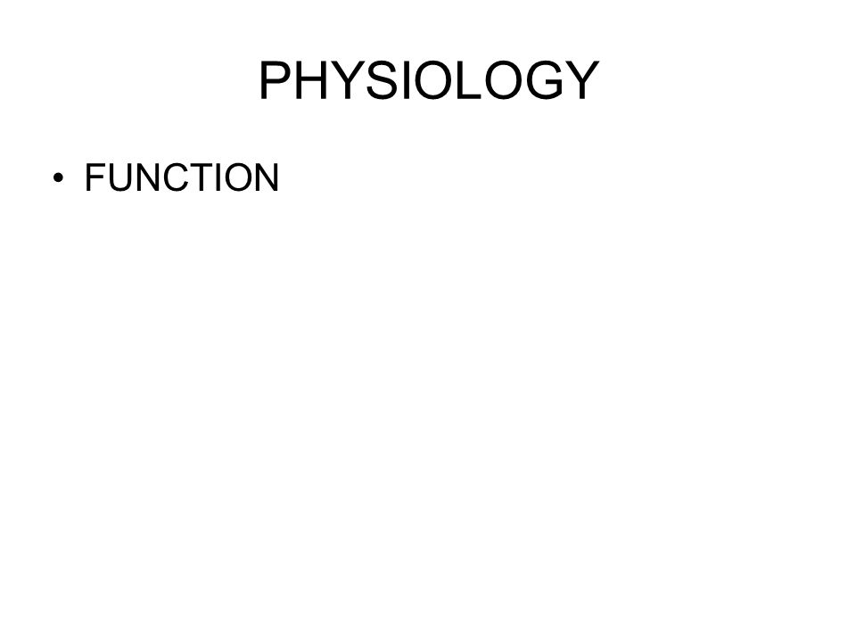 PHYSIOLOGY FUNCTION