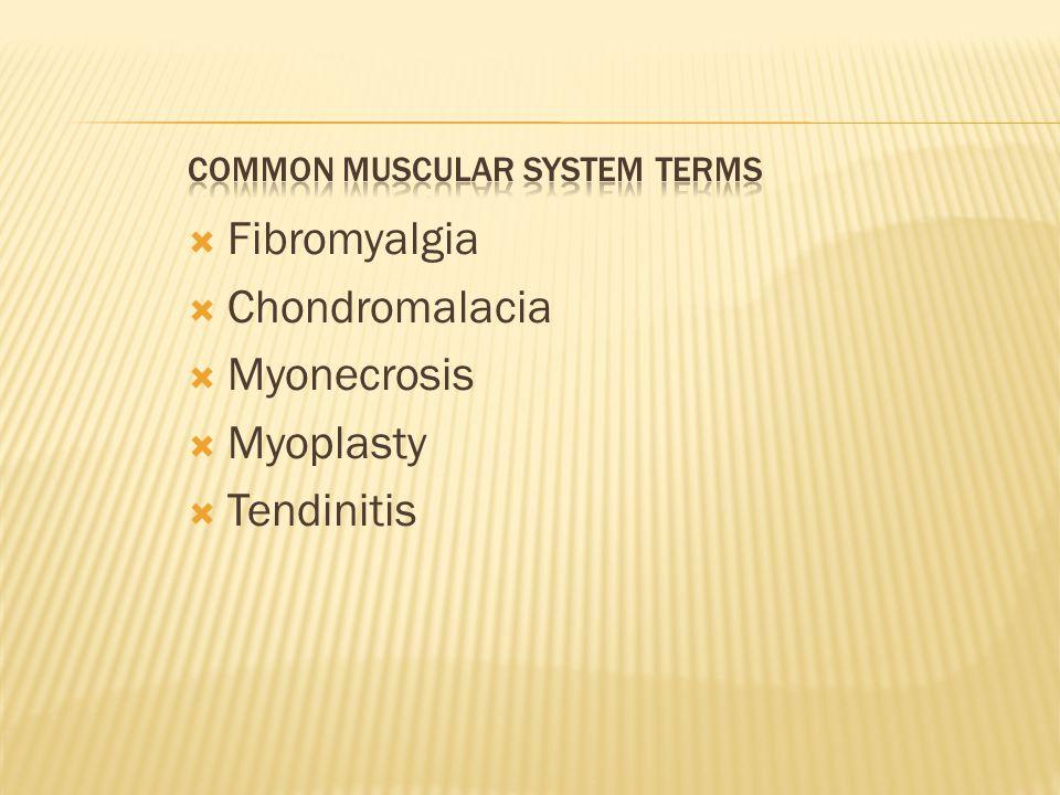  Fibromyalgia  Chondromalacia  Myonecrosis  Myoplasty  Tendinitis