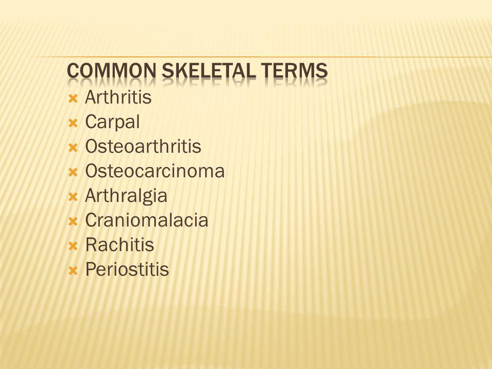  Arthritis  Carpal  Osteoarthritis  Osteocarcinoma  Arthralgia  Craniomalacia  Rachitis  Periostitis