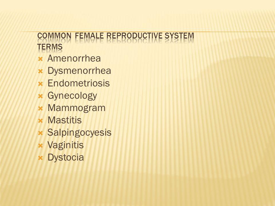  Amenorrhea  Dysmenorrhea  Endometriosis  Gynecology  Mammogram  Mastitis  Salpingocyesis  Vaginitis  Dystocia