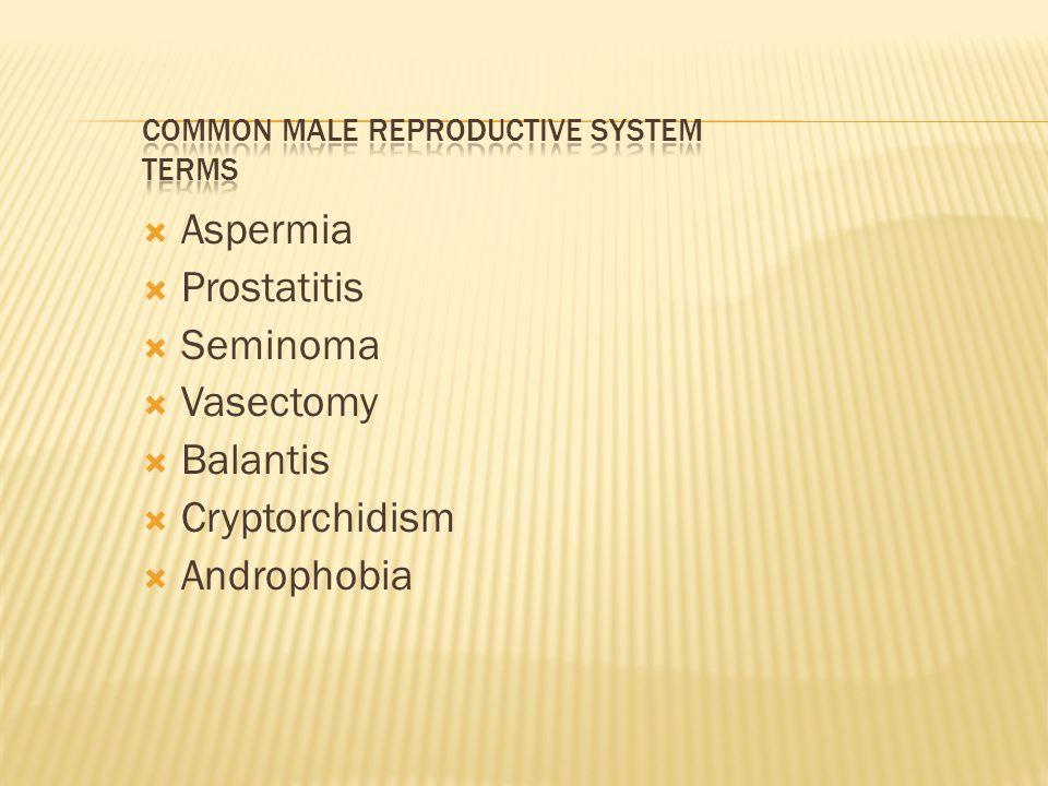  Aspermia  Prostatitis  Seminoma  Vasectomy  Balantis  Cryptorchidism  Androphobia