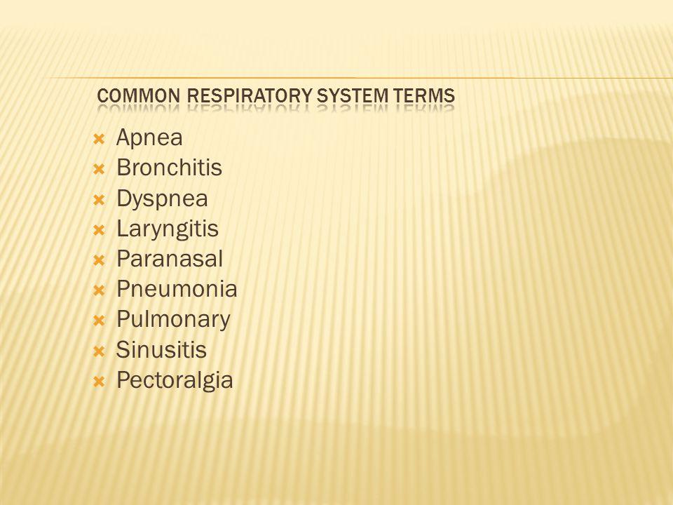  Apnea  Bronchitis  Dyspnea  Laryngitis  Paranasal  Pneumonia  Pulmonary  Sinusitis  Pectoralgia