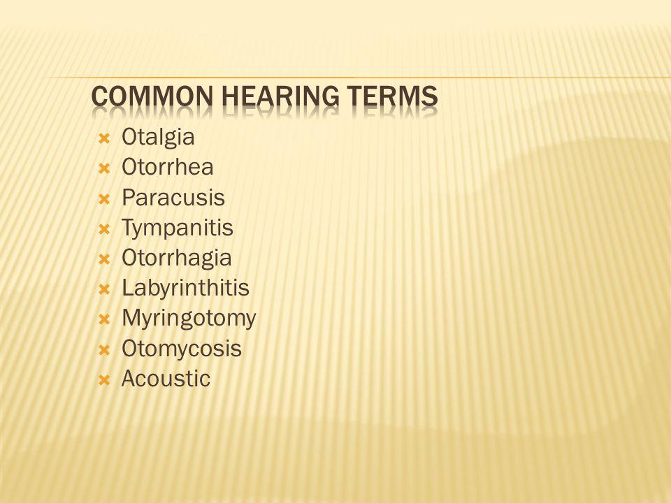 Otalgia  Otorrhea  Paracusis  Tympanitis  Otorrhagia  Labyrinthitis  Myringotomy  Otomycosis  Acoustic