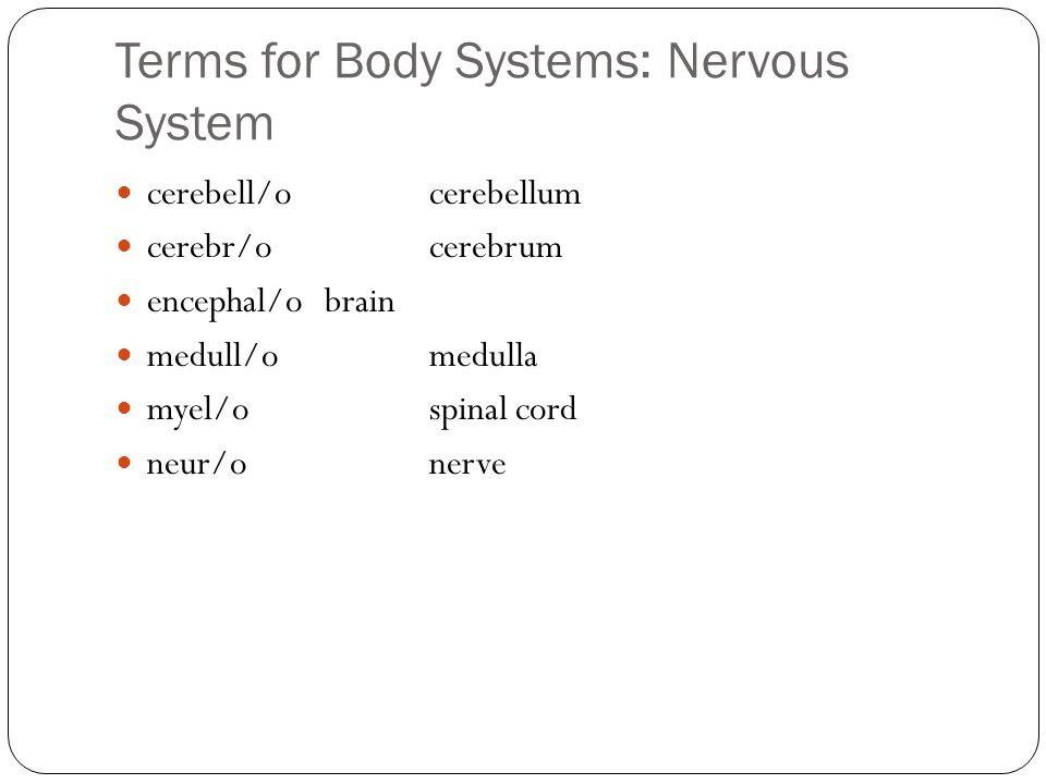 Terms for Body Systems: Nervous System cerebell/ocerebellum cerebr/ocerebrum encephal/obrain medull/omedulla myel/ospinal cord neur/onerve