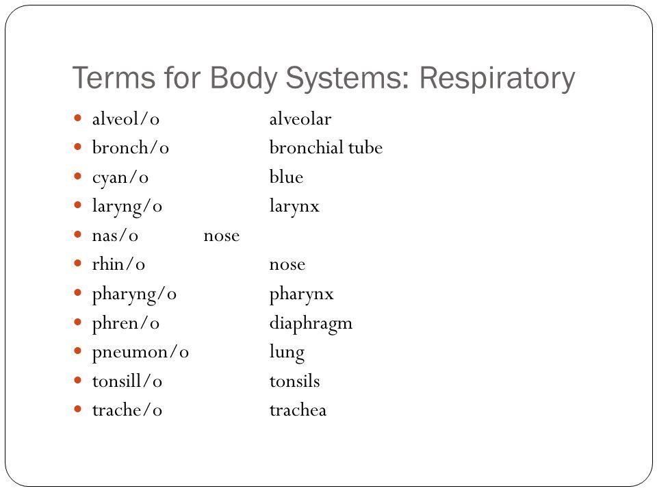 Terms for Body Systems: Respiratory alveol/oalveolar bronch/obronchial tube cyan/oblue laryng/olarynx nas/onose rhin/onose pharyng/opharynx phren/odiaphragm pneumon/olung tonsill/otonsils trache/otrachea