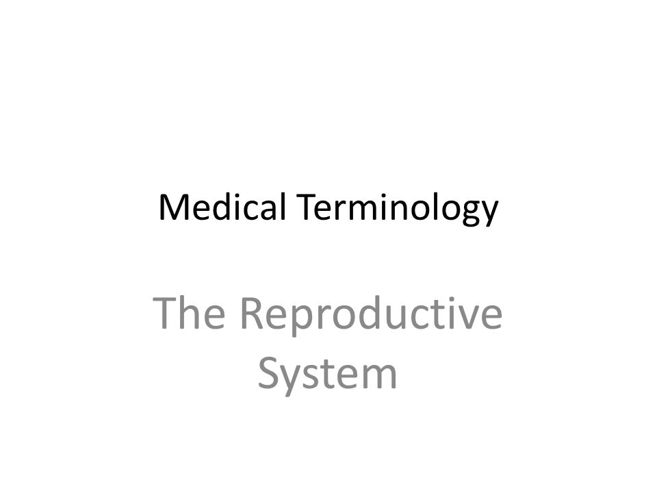 Medical Terminology The Reproductive System