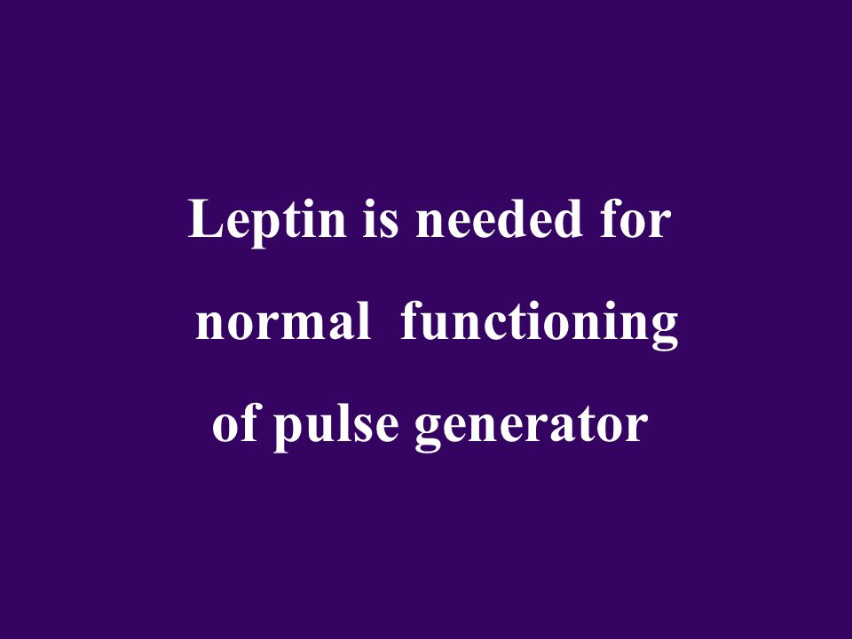 Leptin is needed for normal functioning of pulse generator