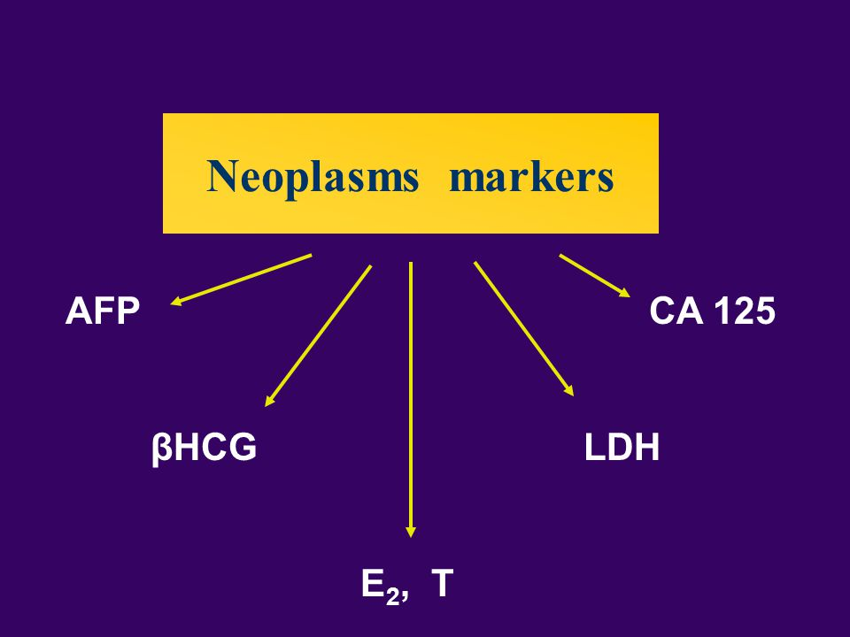 Neoplasms markers AFP CA 125 βHCG LDH E 2, T