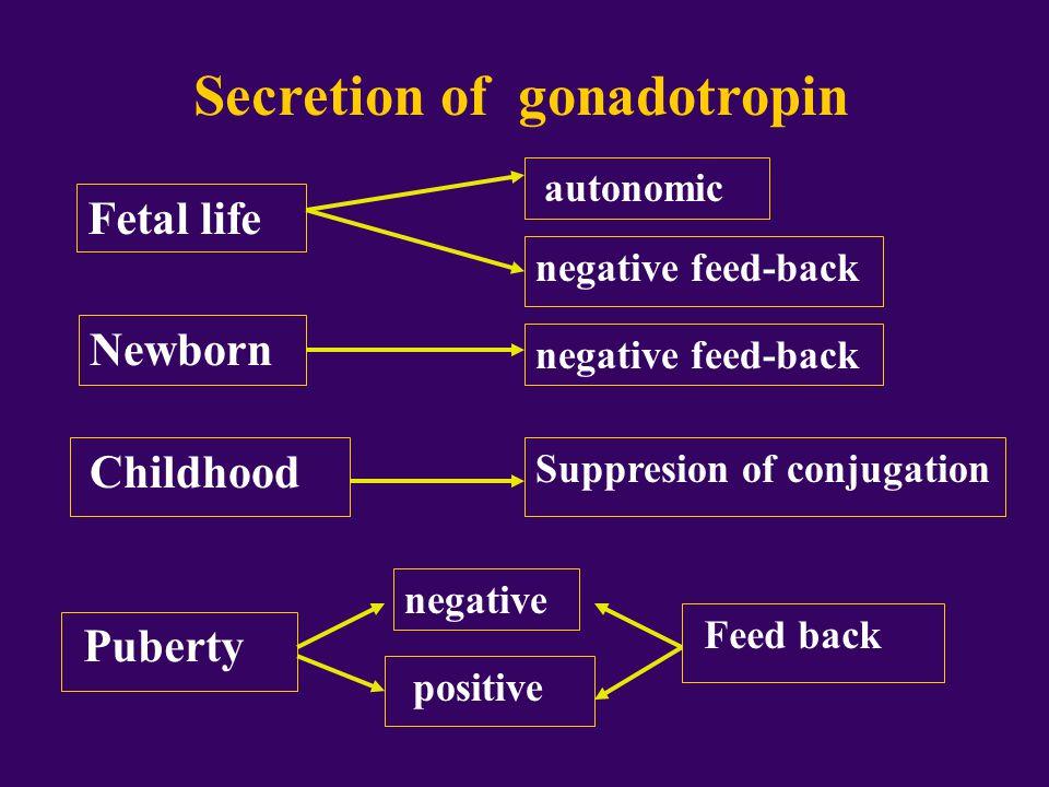Regulation of GnRH function  Restraint  - Beta- endorphin  - NPY  - CRH  - melatonin  Simulation - adrenergic activity