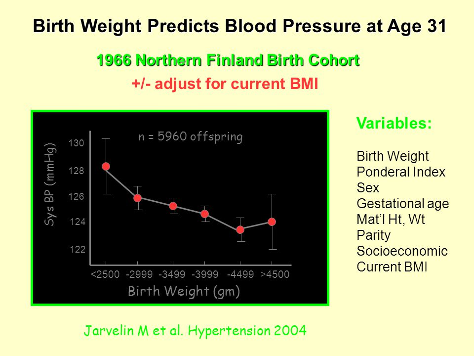 Birth Weight (gm) 4500 130 128 126 124 122 Sys BP (mmHg) Birth Weight Predicts Blood Pressure at Age 31 1966 Northern Finland Birth Cohort +/- adjust for current BMI Jarvelin M et al.