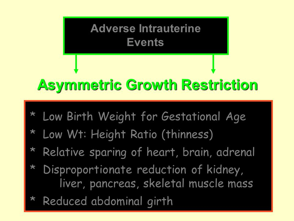 Asymmetric Growth Restriction Adverse Intrauterine Events * Low Birth Weight for Gestational Age * Low Wt: Height Ratio (thinness) * Relative sparing of heart, brain, adrenal * Disproportionate reduction of kidney, liver, pancreas, skeletal muscle mass * Reduced abdominal girth