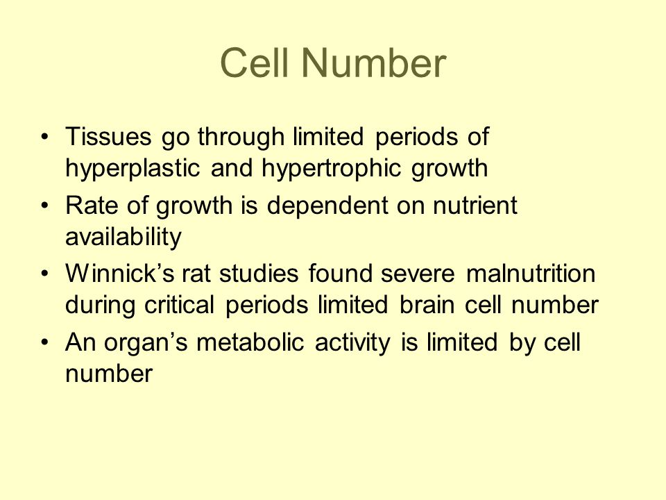 Cell Number Tissues go through limited periods of hyperplastic and hypertrophic growth Rate of growth is dependent on nutrient availability Winnick's rat studies found severe malnutrition during critical periods limited brain cell number An organ's metabolic activity is limited by cell number