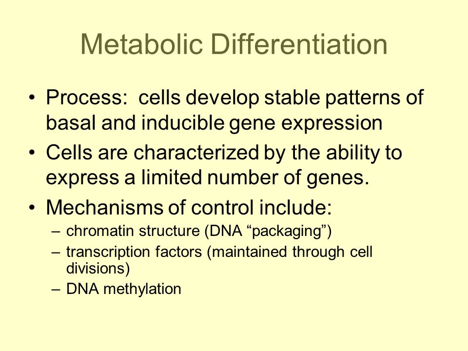 Metabolic Differentiation Process: cells develop stable patterns of basal and inducible gene expression Cells are characterized by the ability to express a limited number of genes.