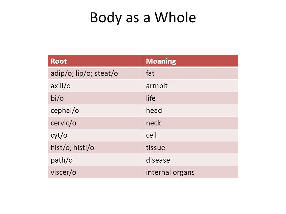 Body as a Whole RootMeaning adip/o; lip/o; steat/ofat axill/oarmpit bi/olife cephal/ohead cervic/oneck cyt/ocell hist/o; histi/otissue path/odisease viscer/ointernal organs