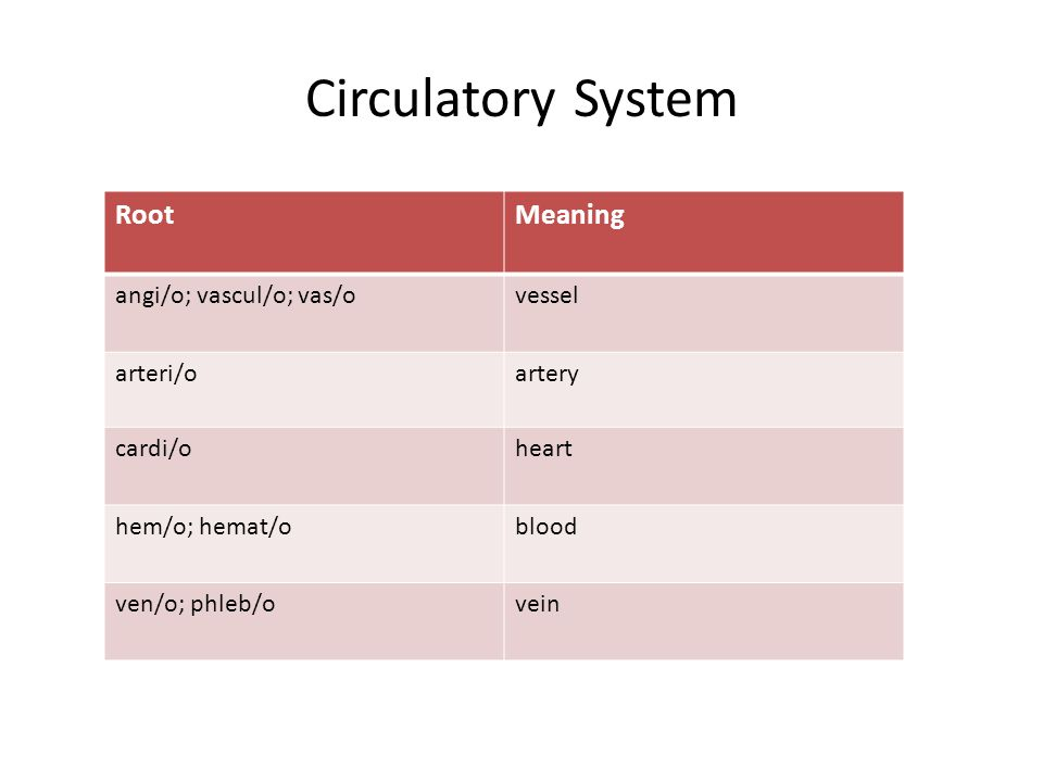 Circulatory System RootMeaning angi/o; vascul/o; vas/ovessel arteri/oartery cardi/oheart hem/o; hemat/oblood ven/o; phleb/ovein