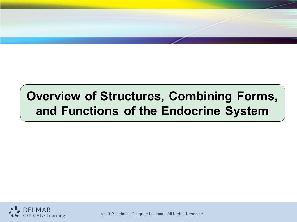 © 2013 Delmar, Cengage Learning. All Rights Reserved Overview of Structures, Combining Forms, and Functions of the Endocrine System