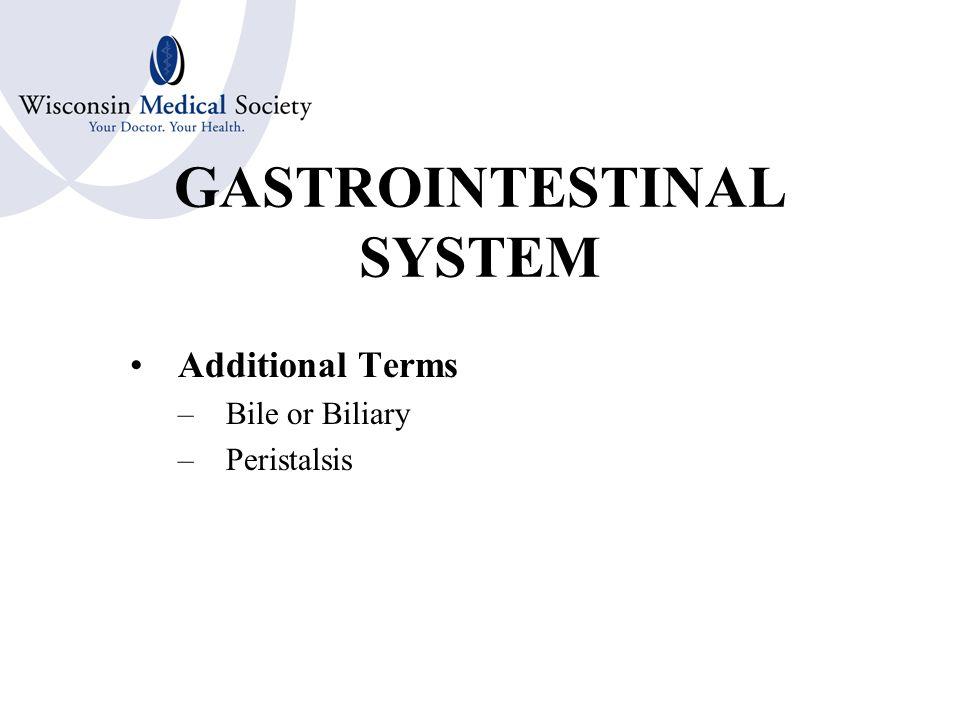GASTROINTESTINAL SYSTEM Other Structures –Peritoneum –Appendix –Abdomen