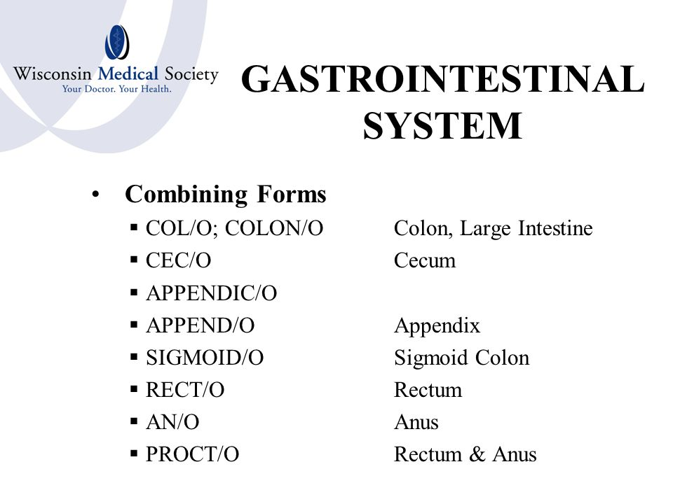 GASTROINTESTINAL SYSTEM Combining Forms  OR/OMouth or Oral Cavity  PHARYNG/OPharynx or Throat  ESOPHAG/OEsophagus  GASTR/OStomach  PYLOR/OPyloric sphincter  ILE/O, ENTER/O Small Intestine  DUODEN/ODuodenum  JEJUN/OJejunum  ILE/OIleum