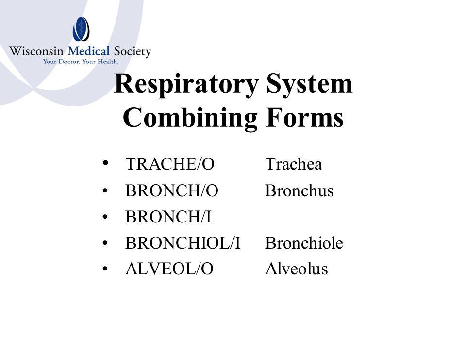 Respiratory System Combining Forms NAS/ONose RHIN/ONose SINUS/OSinus PHARYNG/OPharynx TONSILL/OTonsil ADENOID/OAdenoid LARYNG/OLarynx EPIGLOTT/OEpiglottis