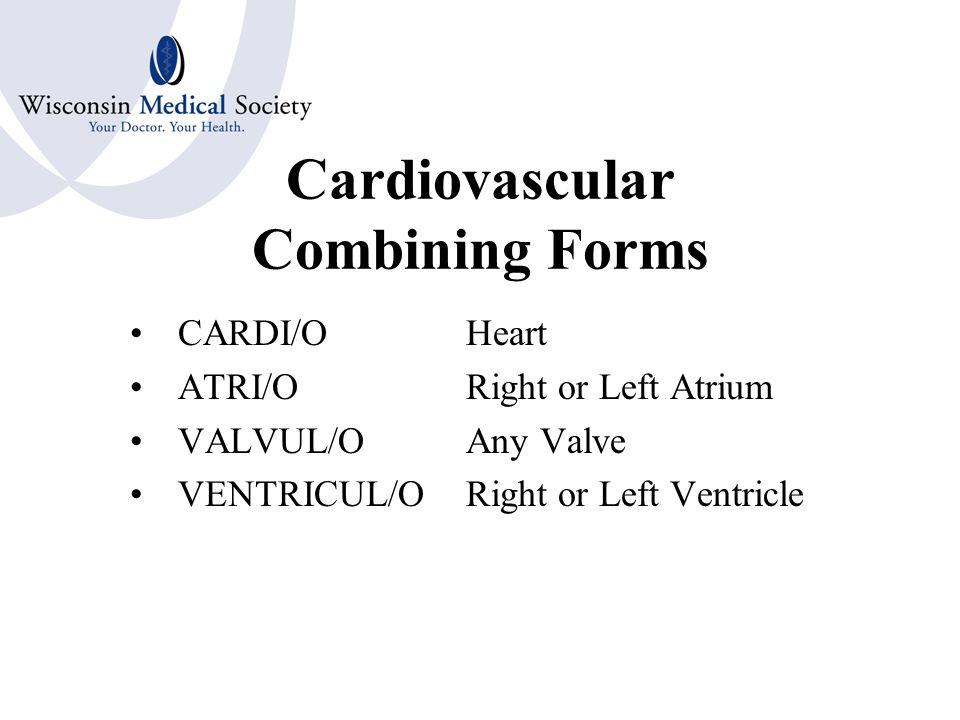 Cardiovascular System Terms Pacemaker Coronary Arteries Septum Pericardium Systole Diastole Coagulation Platelets