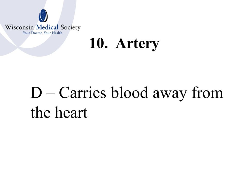 9. Vein E – Carries blood back to the heart
