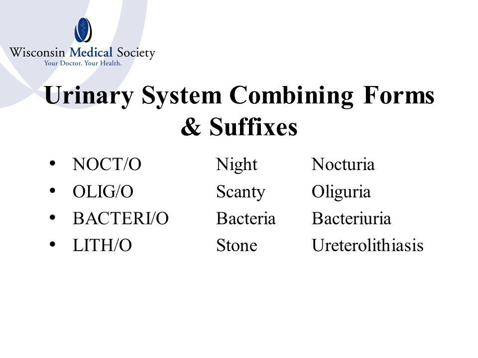 Urinary System Combining Forms & Suffixes UR/OUrinationDysuria -URIA DIPS/OThirstPolydipsia GLYC/OSugarGlycosuria GLUC/O