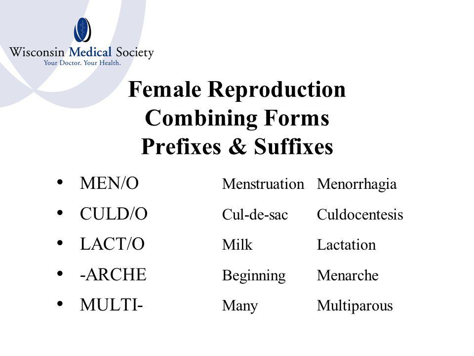 Female Reproduction Combining Forms OOPHOR/O; OVARI/OOvary SALPING/OFallopian Tube HYSTER/O; UTER/OUterus METRI/O; METR/O CERVIC/OCervix COLP/O; VAGIN/OVagina EPISI/O; VULV/OVulva MAMM/O; MAST/OBreast
