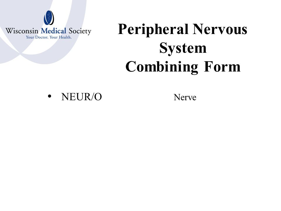 Central Nervous System Combining Forms CEREBR/O Brain ENCEPHAL/O MYEL/O Spinal CordBone Marrow