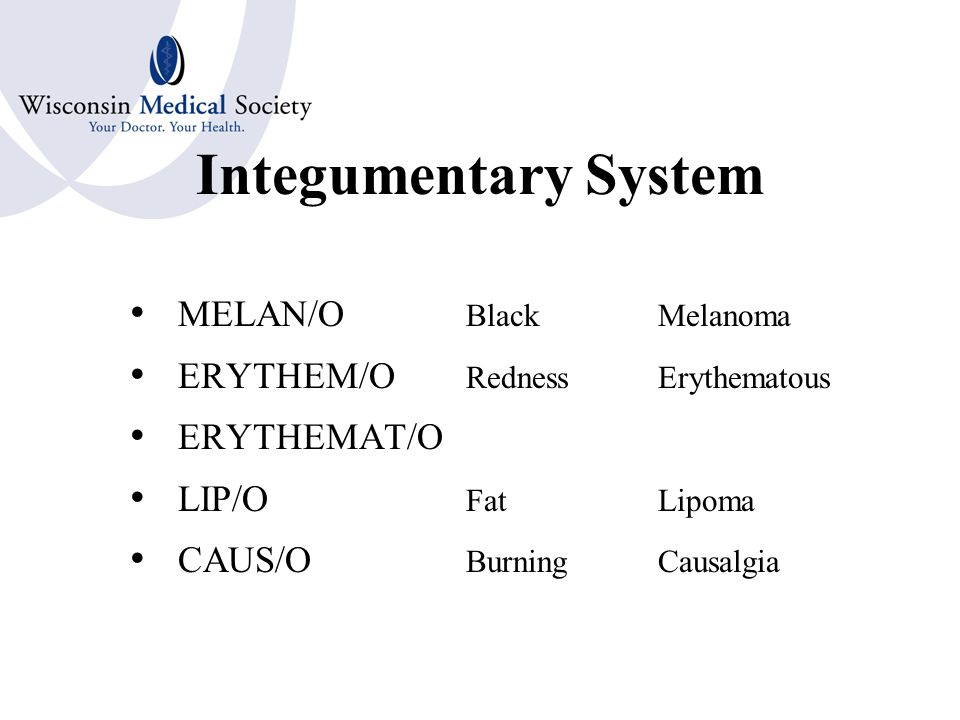 Integumentary System Combining Forms DERM/O Skin DERMAT/O CUTANE/O TRICH/O Hair PIL/O ONYCH/O Nails UNGU/O SEB/O Sebum or Oil HIDR/O Sweat or Sweat Glands